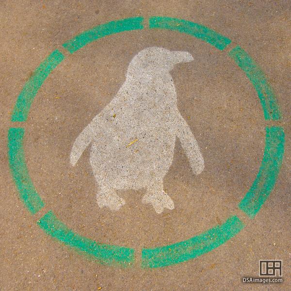 Penguin walking sign, Stanley Park, Vancouver