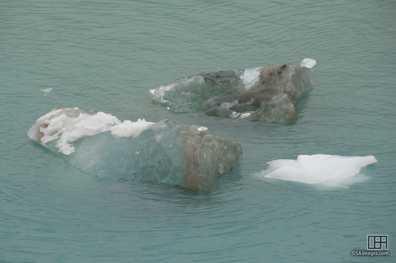 Floating ice in Tarr Inlet, Glacier Bay