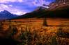 CAN-Bow Pass, Banff NP-3010-07