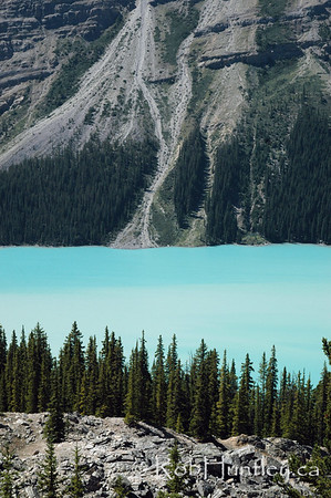Peyto Lake, Banff National Park, Alberta.