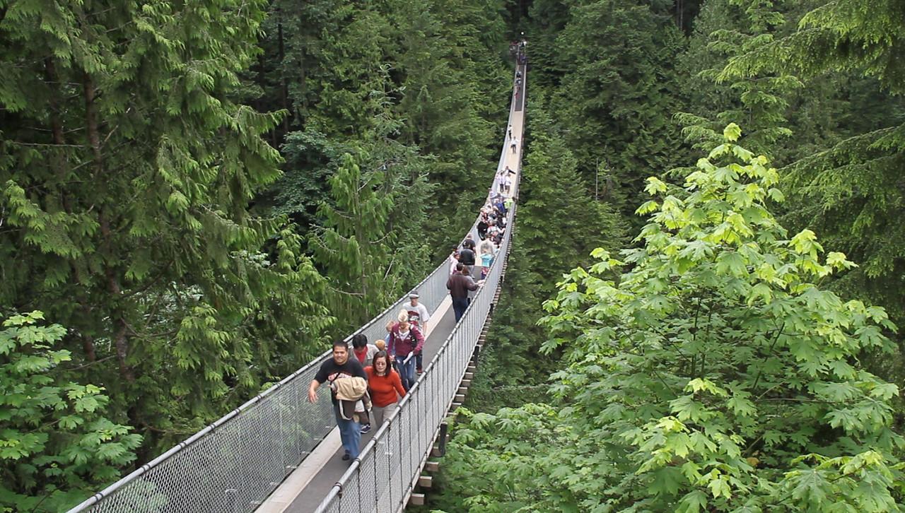 Vancouver, British Columbia, Canada, 2011<br /> Capilano Suspension Bridge
