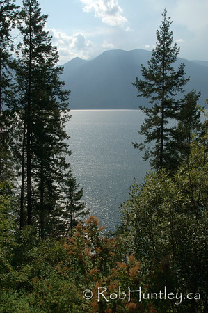 Through the trees, Kootenay Lake in British Columbia.