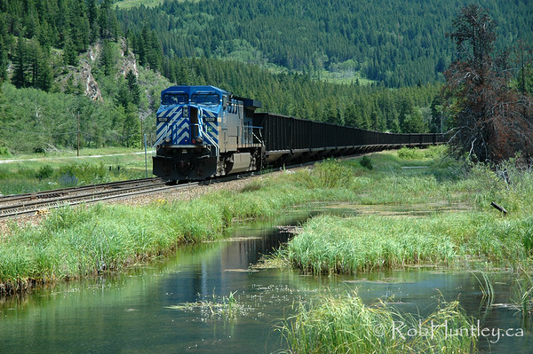 Freight train alongside a stream .