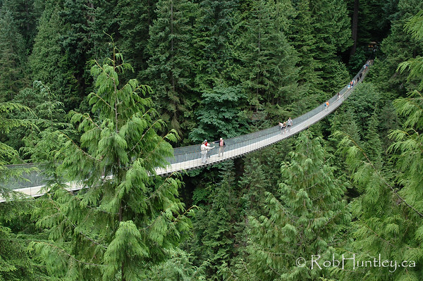 Capilano Suspension Bridge north of Vancouver, British Columbia.