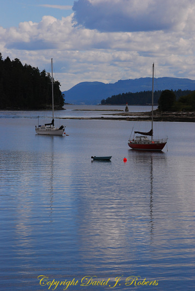Sailboats Degnen Bay Gabriola Is
