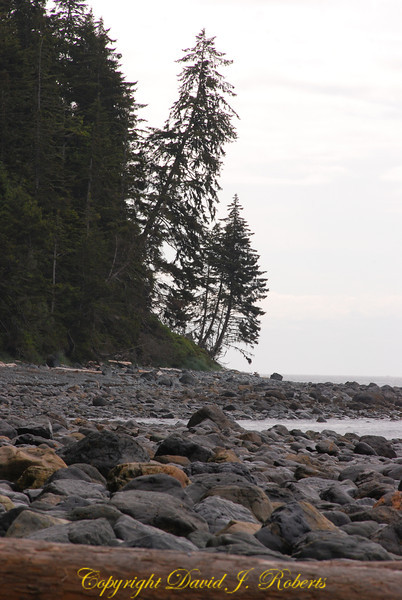 China Beach, Juan de Fuca Prov Park