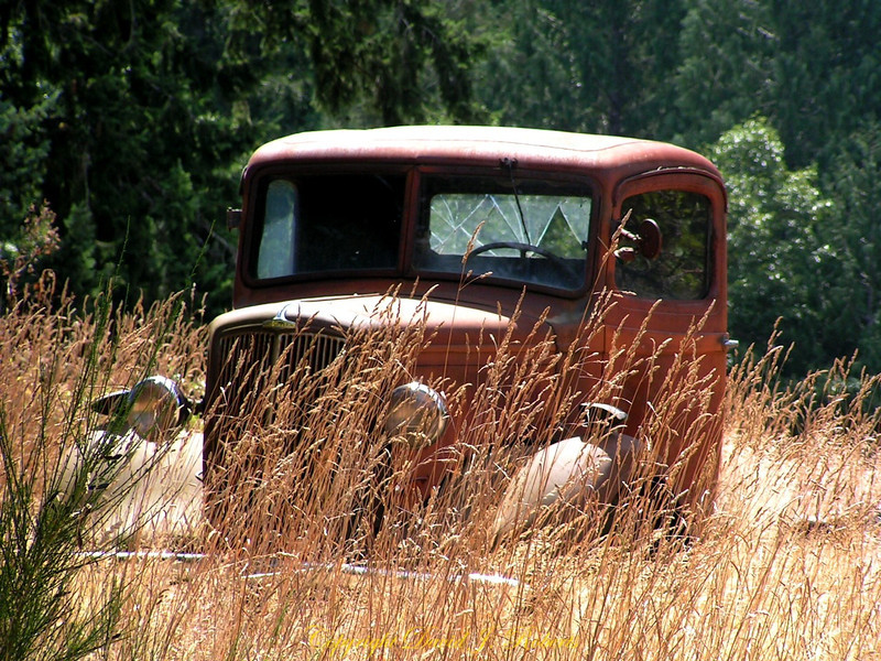 Old truck in a meadow, Salt Spring Island, British Columbia