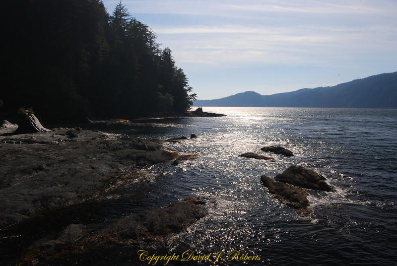 Coastline near Port Renfrew BC