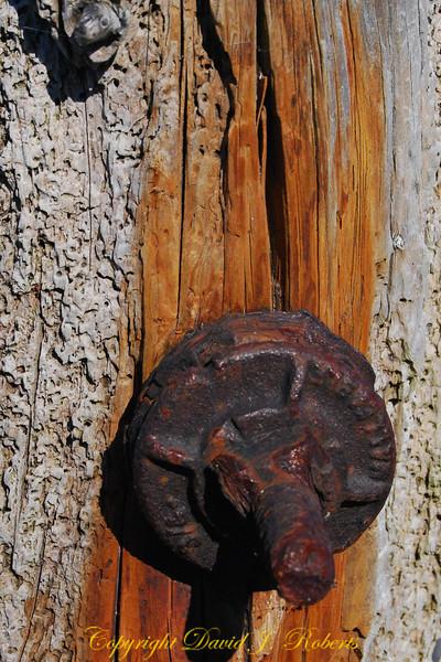 Old bolt, Sooke Bay BC