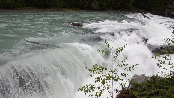 Video: Rearguard falls of the Fraser River, British Columbia, Canada.