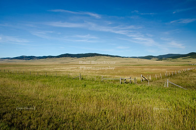 Grassland in Alberta, Canada