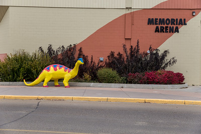Memorial Arena Dino