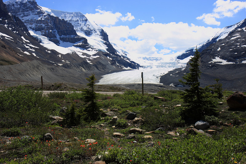 View of Athabasca Glacier from Icefield Centre