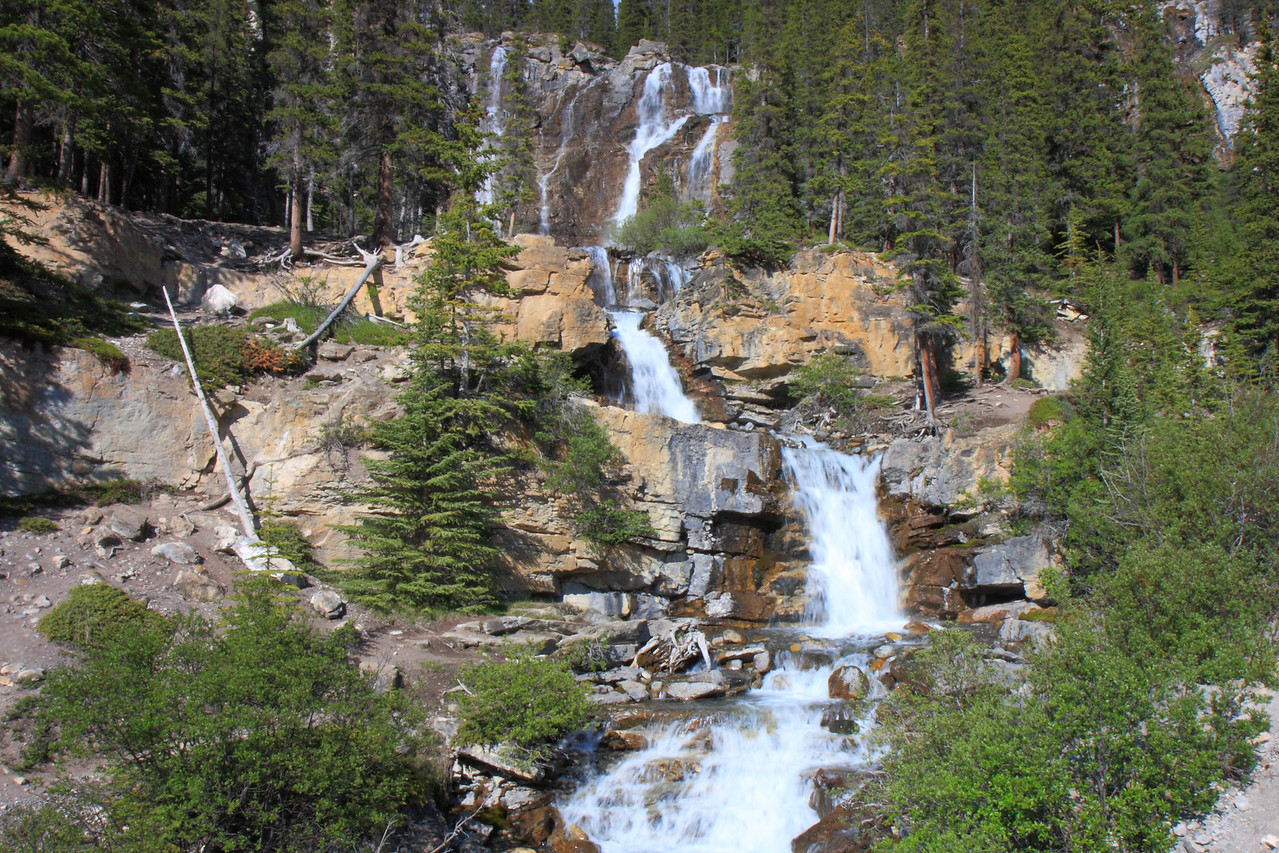Tangle Creek Falls on Icefield Pathway