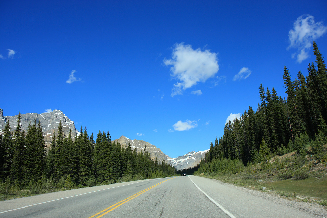 Icefield pathway from Car