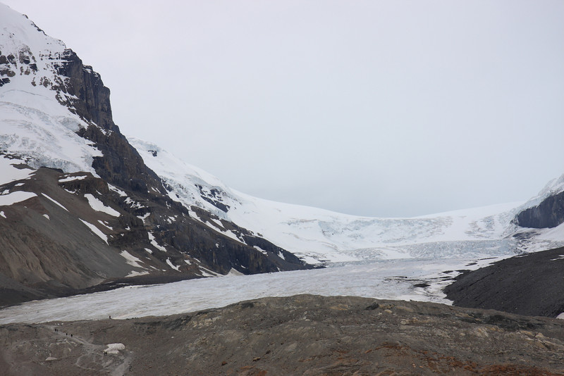 Columbia Icefield- Athabasca Glacier