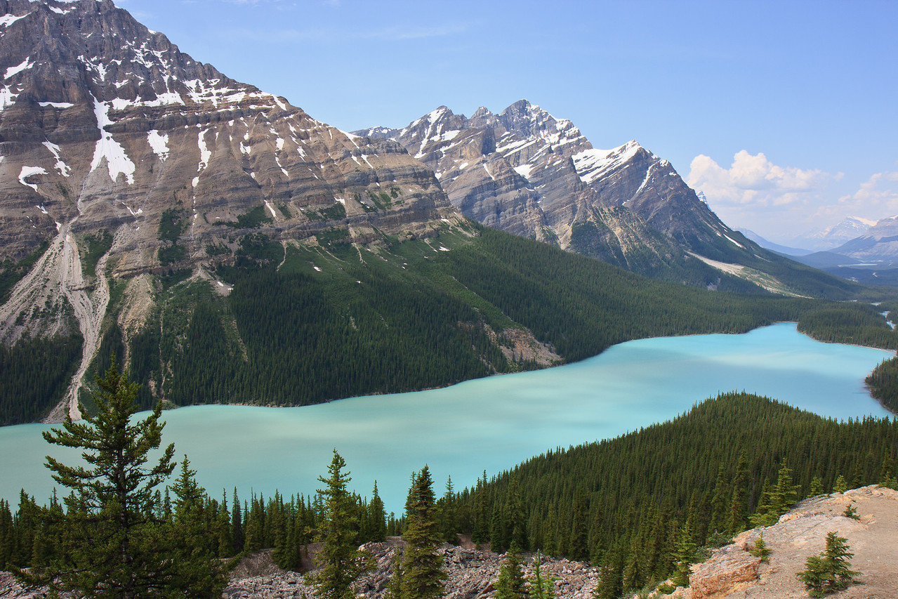 Peyto lake on Icefield Parkway