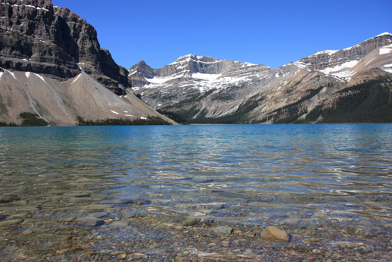 Bow Lake and Glacier