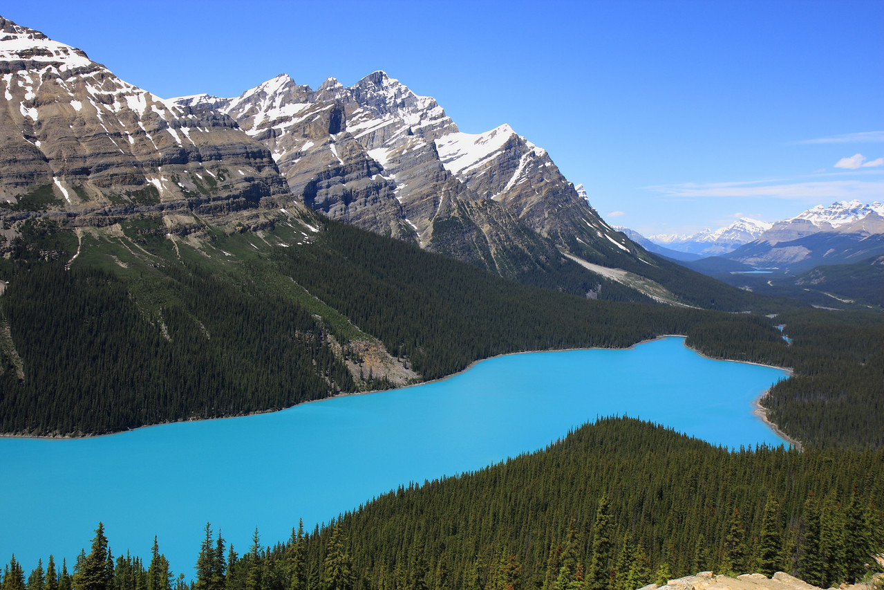 Peyto Lake on Icefield Pathway