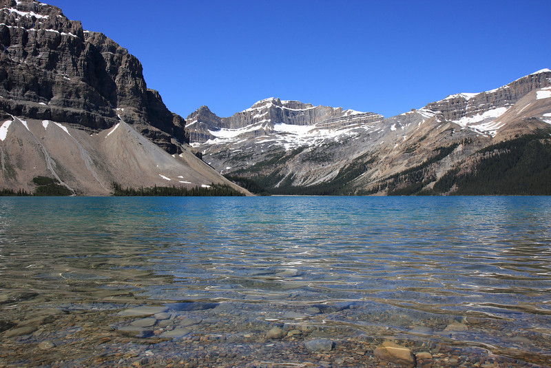 Bow lake and Galcier