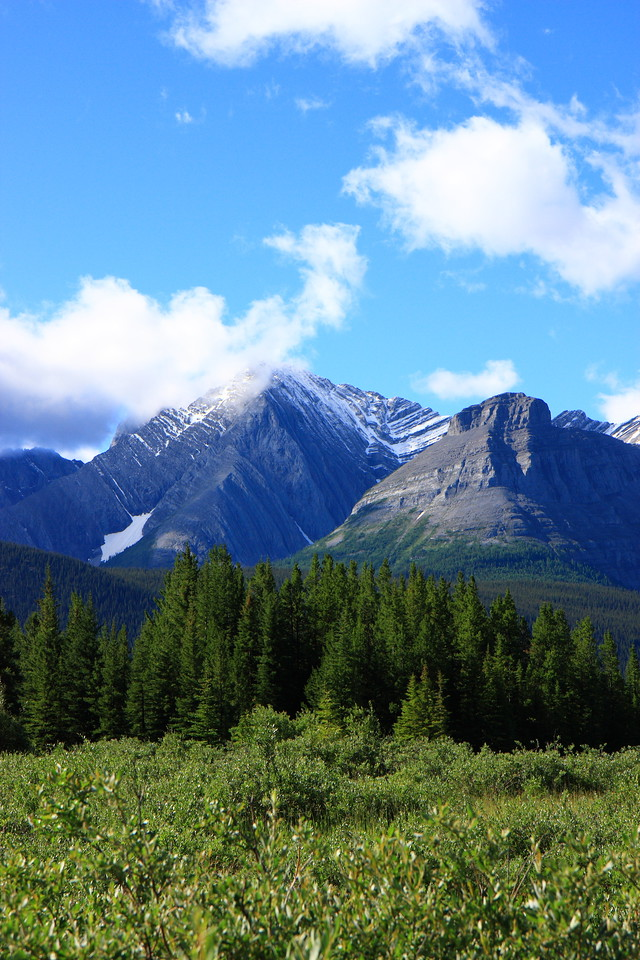View near Lower lake, Kananaskis