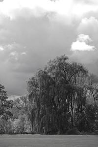 On, Collingwood-10102014-141656(f).jpg