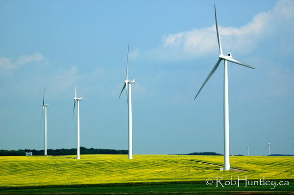 Windmill Farm, southern Manitoba. © Rob Huntley