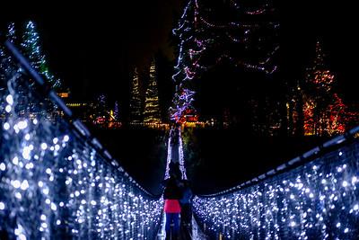 Christmas Lights at Capilano Suspension Bridge in Vancouver, British Columbia