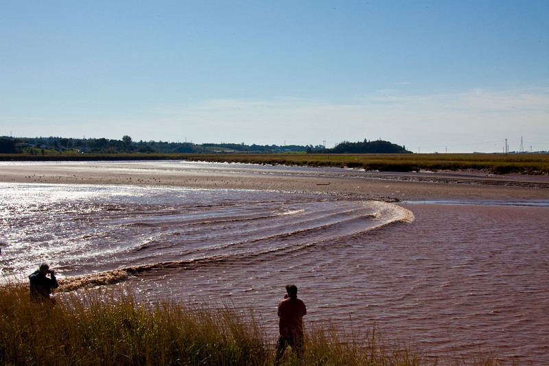 The leading edge of the Tidal Bore