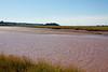 Pre Tidal Bore Salmon River at 3:00 PM