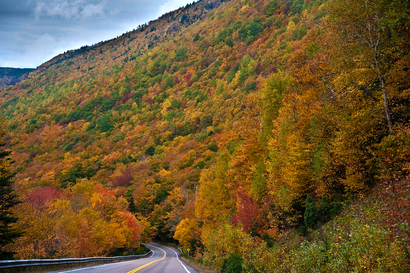 Fall color on Cabot Trail: Cape Breton Highlands National Park, NS