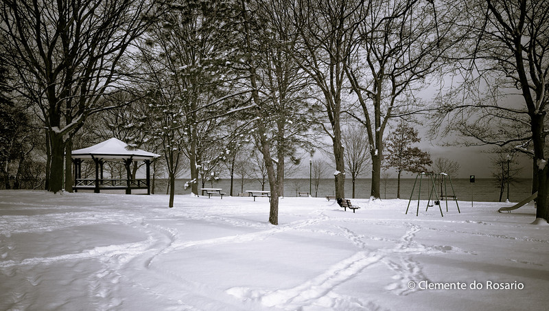 Beautiful winter scene after 15 centimetres of snowfall in Oakville