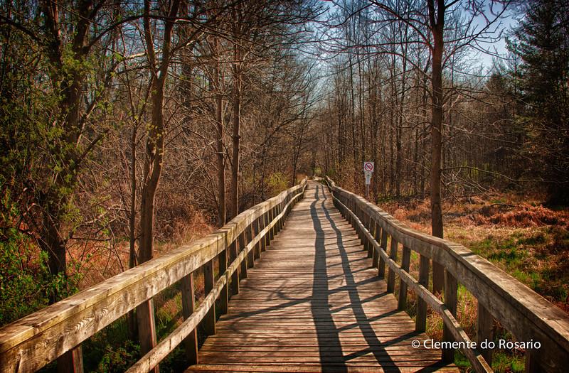 Rattray Marsh trail, Mississauga, Ontario