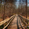 Rattray Marsh trail, Mississauga, Ontario