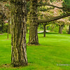 Gairloch Gardens, Oakville, Ontario, Canada