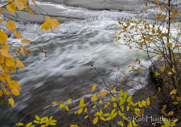 Late fall colour beside the Mississippi River.