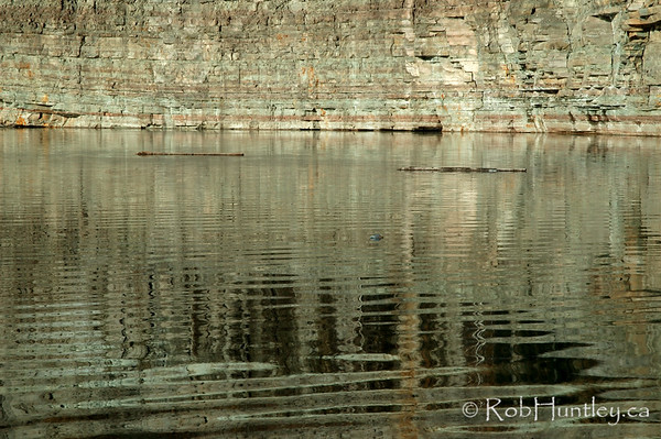 Logs floating in the lake at the Marmora Iron Mine, Marmora, Ontario.  © Rob Huntley