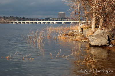 Ottawa River in the late fall. Champlain Bridge is in the distance. © Rob Huntley
