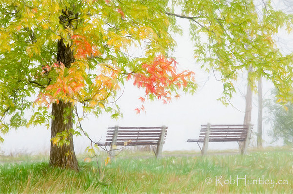 Riverside Benches in the Mist.
