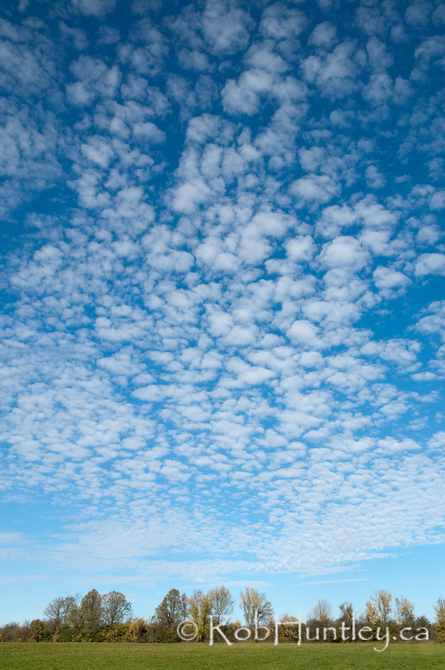 Autumn Country Sky Late fall sky while on a hike in the country. Ottawa Valley. License this photo on Getty Images. © Rob Huntley