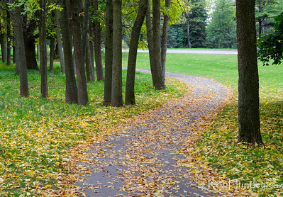 Bicycle Path in my neighbourhood. © Rob Huntley