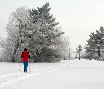 Woman in red jacket cross country skiing