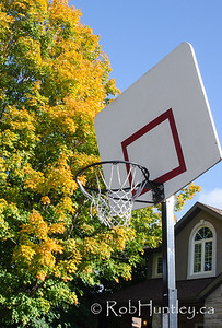 Roadside basketball net with autumn colours. © Rob Huntley
