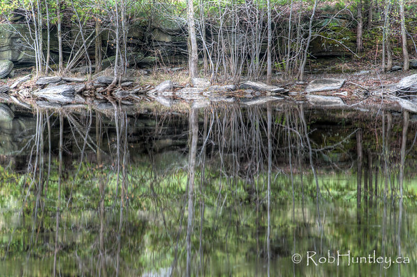 Abstract shoreline reflections.