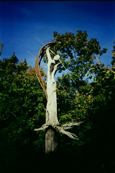 Sculpture from the wood, Montreal, 1999.