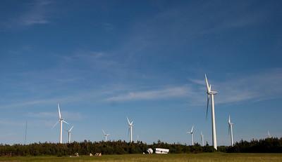 wind farm at north cape pei_070709_0242