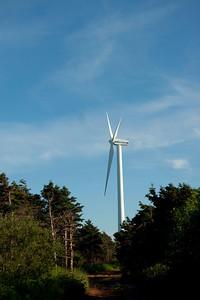 wind farm at north cape pei_070709_0239