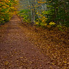 Village path in late fall: PEI