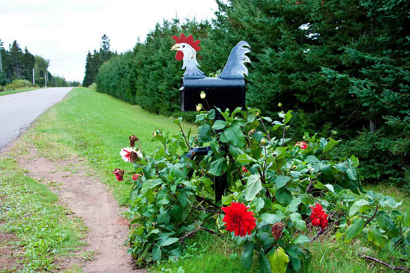 Lots of elaborately decorated mailboxes<br /> in the Acadia Area
