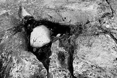 Diverses photographies prises sur les rives de la rivière Rouge ou de la rivière à Brebeuf, Qc, Canada